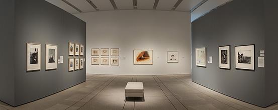 Graphicstudio: Uncommon Practice at USF Tampa Museum of Art