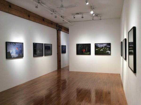Mayumi Lake exhibition at Miyako Yoshinaga Gallery