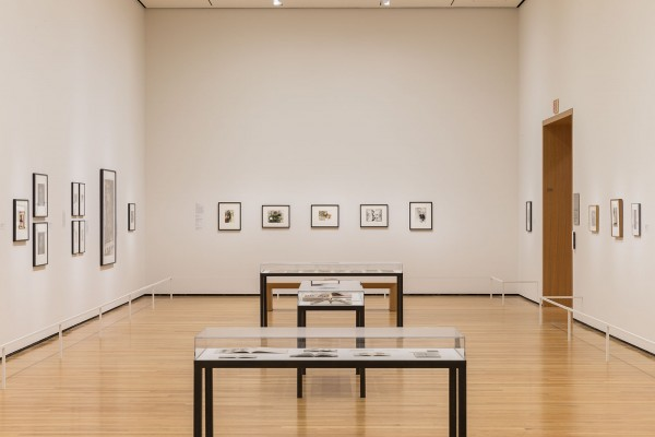 The Believable Lie: Heinecken, Polke, and Feldmann at the Cleveland Museum of Art