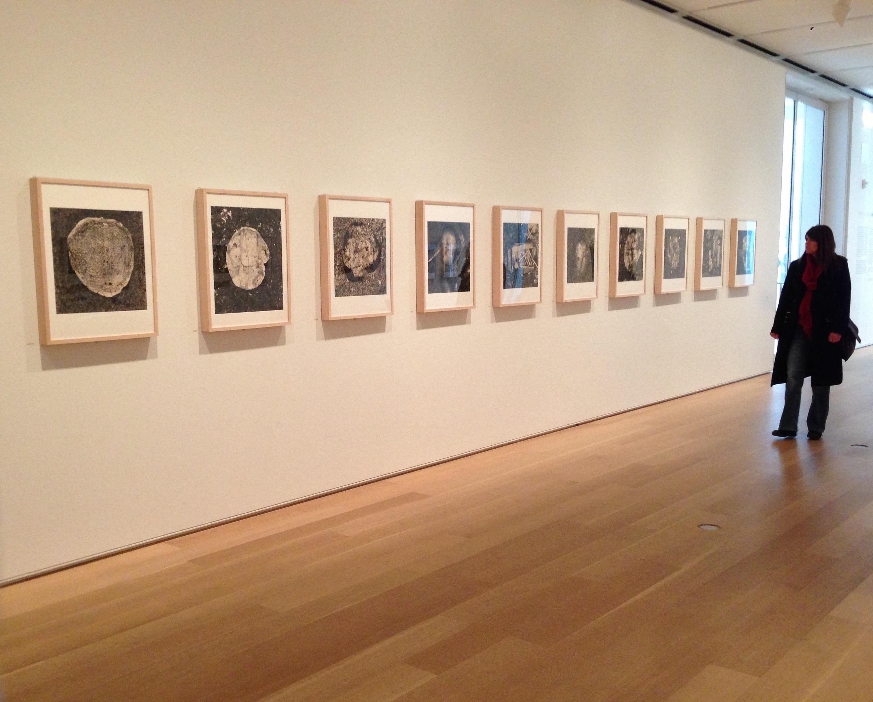 Irving Penn Art Institute of Chicago
