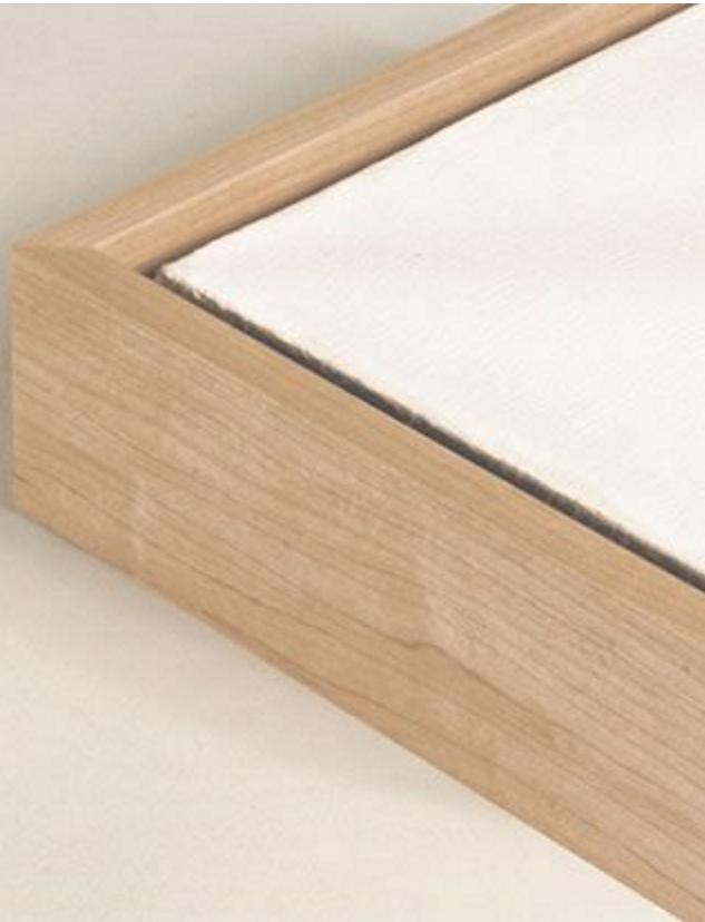 Floater frames for canvas