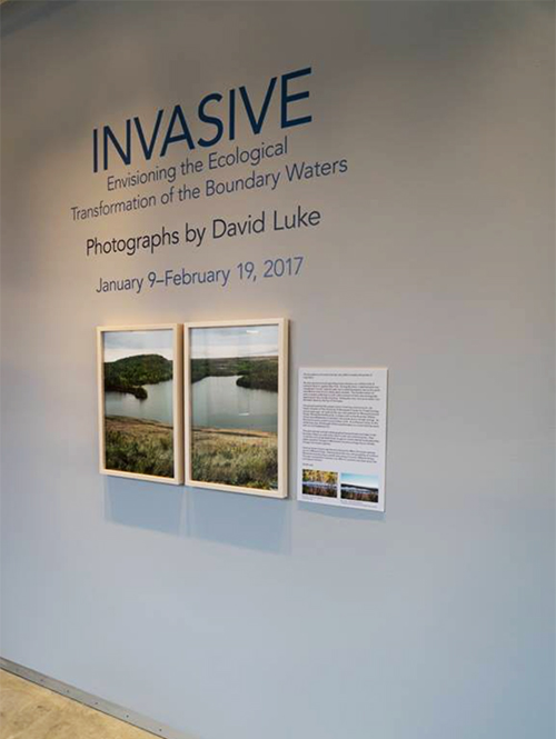 david luke exhibition shot