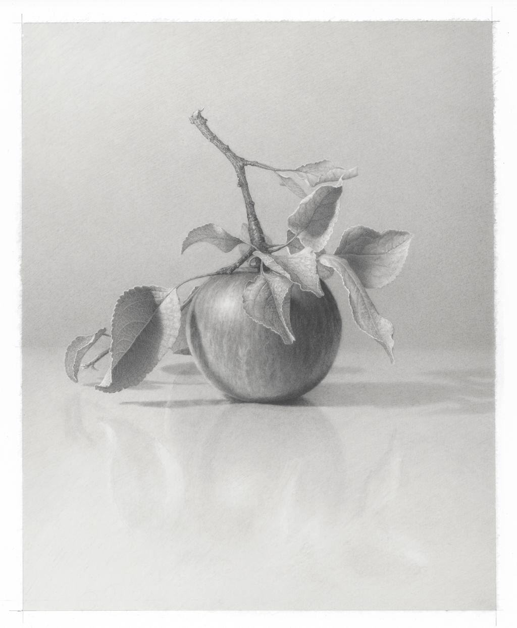 "Skip Steinworth ""Apple"" 14"" x 11"""